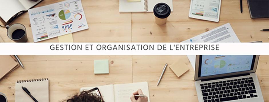 Gestion et organisation de l'entreprise